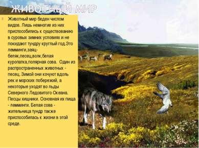 Животный мир беден числом видов. Лишь немногие из них приспособились к сущест...