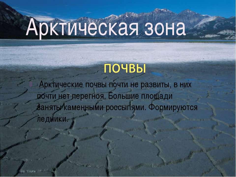 Арктические почвы почти не развиты, в них почти нет перегноя. Большие площади...