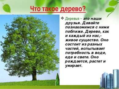 Что такое дерево? Деревья – это наши друзья. Давайте познакомимся с ними побл...