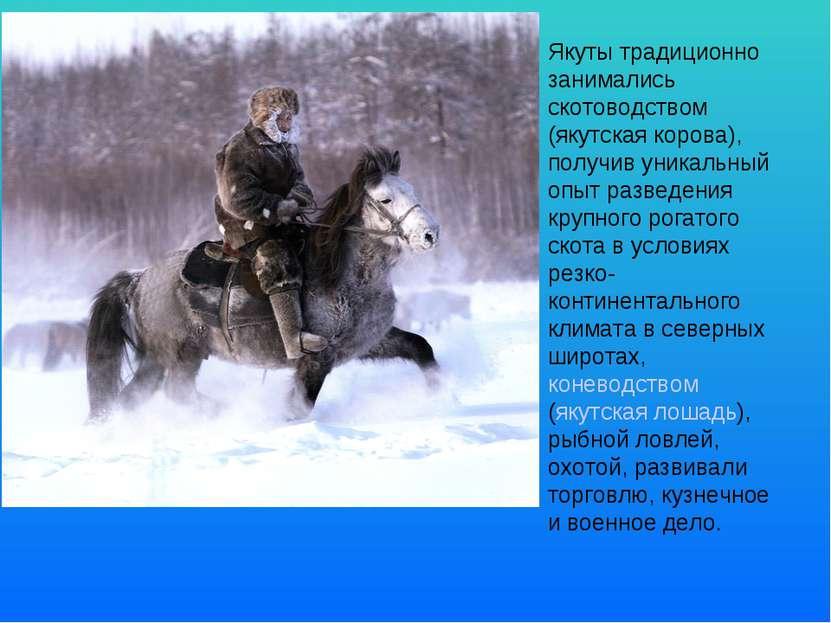 Якуты традиционно занимались скотоводством (якутская корова), получив уникаль...