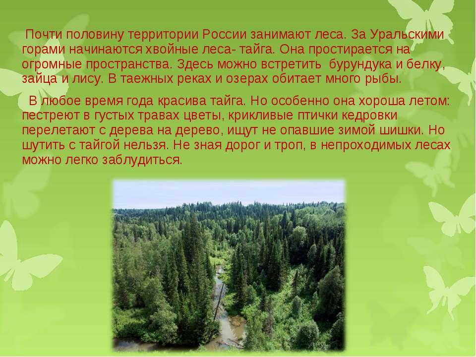 Почти половину территории России занимают леса. За Уральскими горами начинают...