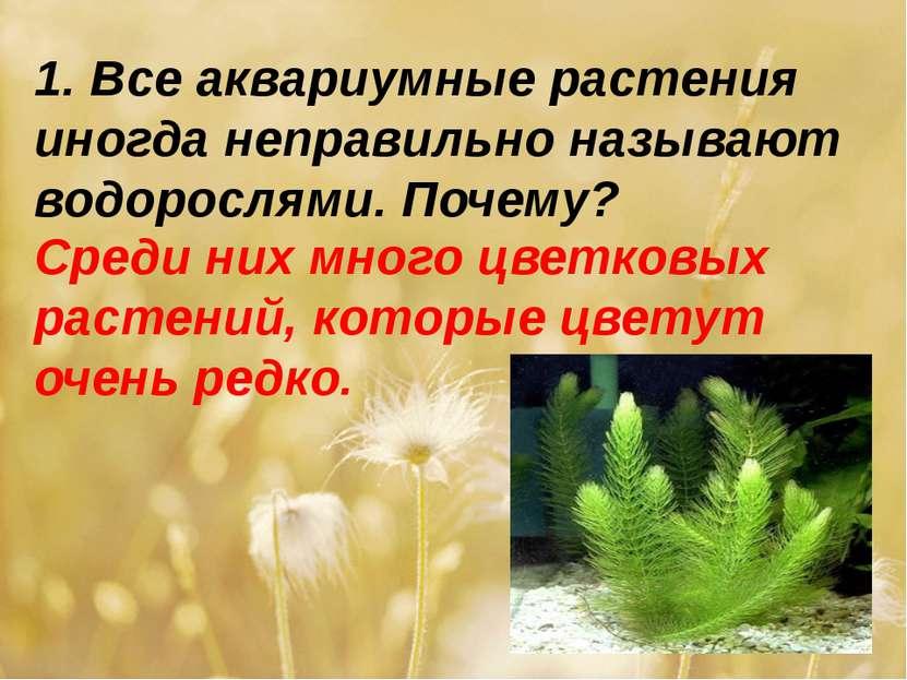 1. Все аквариумные растения иногда неправильно называют водорослями. Почему? ...