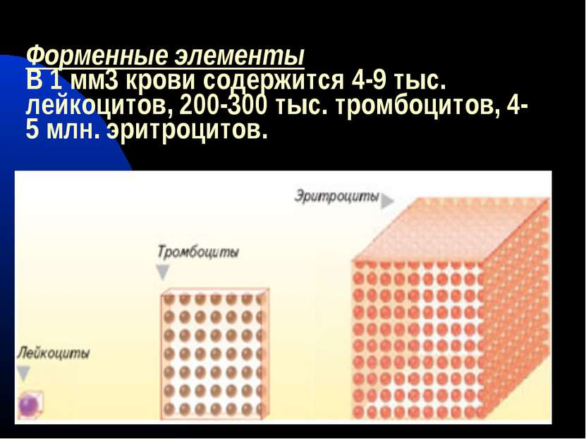 Форменные элементы В 1 мм3 крови содержится 4-9 тыс. лейкоцитов, 200-300 тыс....