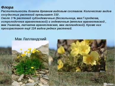 Флора Растительность богата древним видовым составом. Количество видов сосуди...
