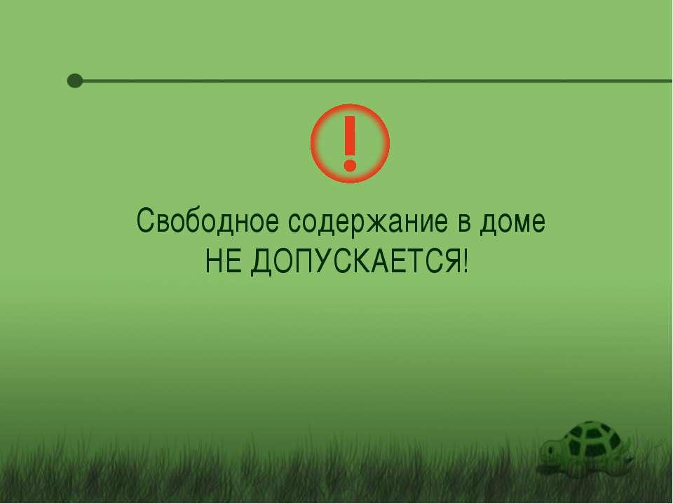Свободное содержание в доме НЕ ДОПУСКАЕТСЯ!