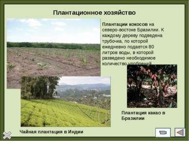 Тест 2 Укажите страны, в которых агропромышленный комплекс приобрел форму так...