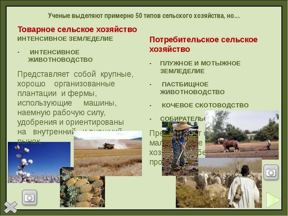 Вопросы по теме «Зелёная революция» Назовите основные направления «зелёной ре...