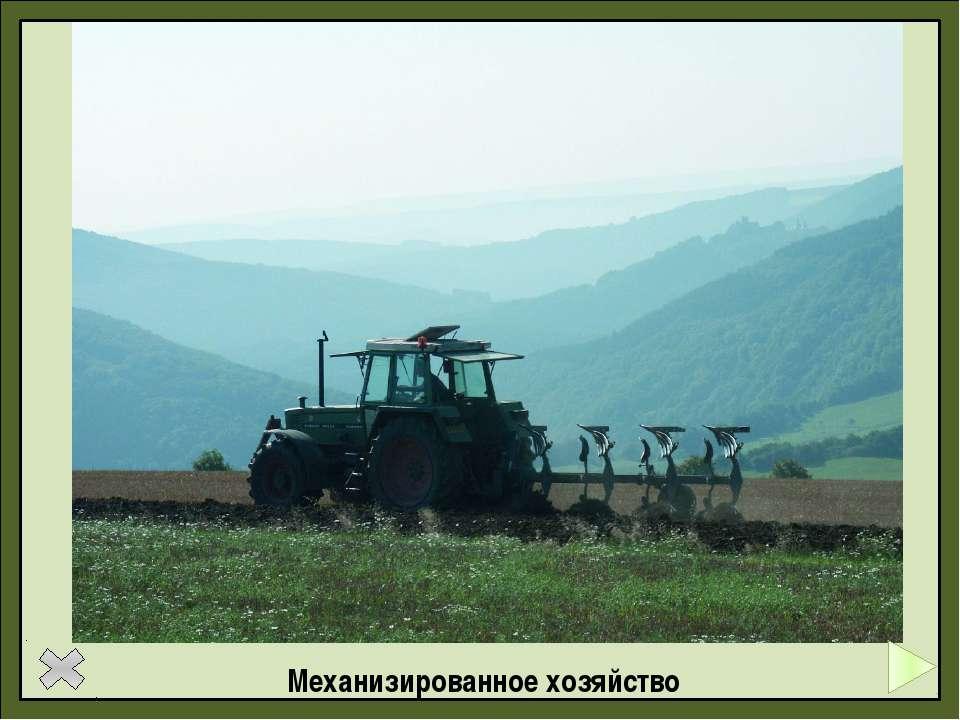 Задания ЕГЭ Важным показателем уровня развития сельского хозяйства страны явл...