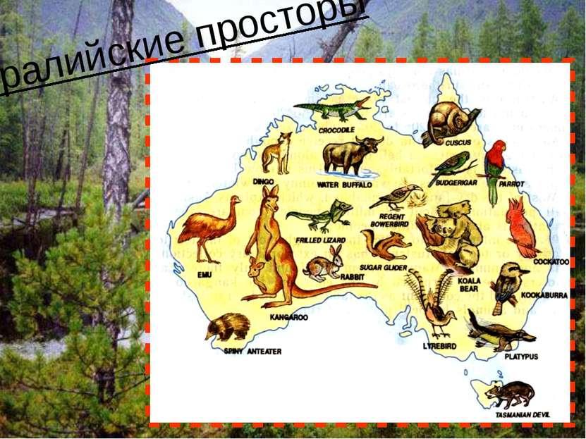 Австралийские просторы