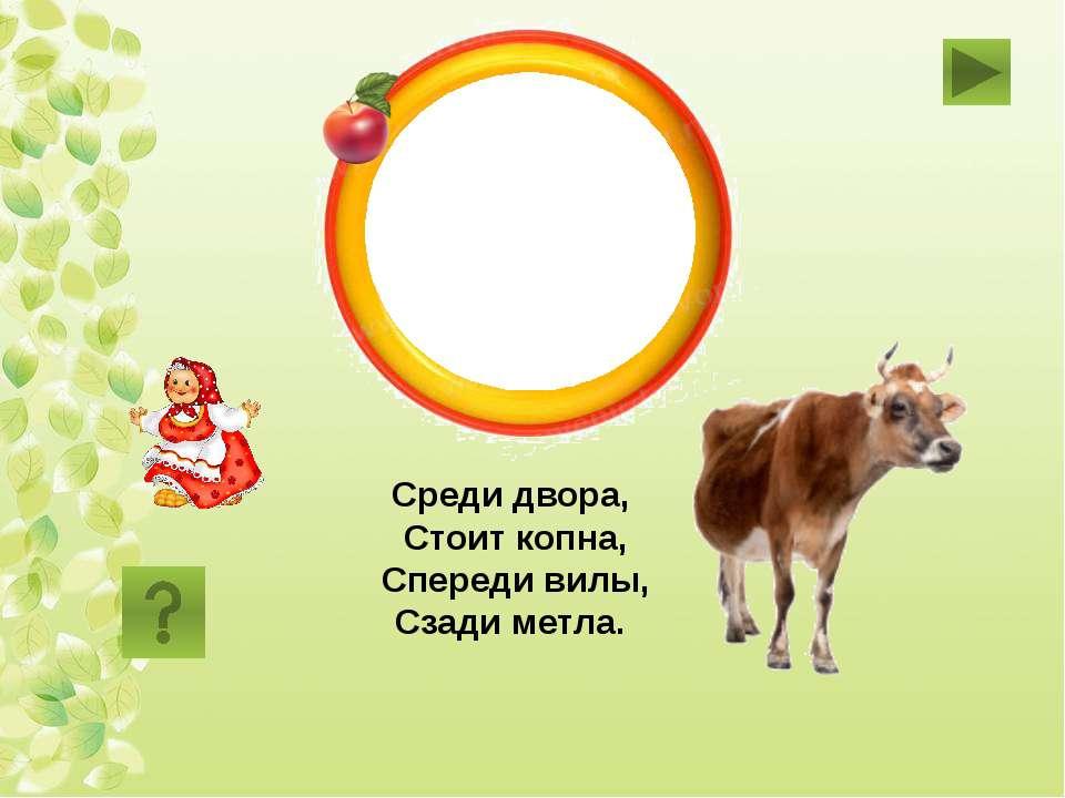 корова Среди двора, Стоит копна, Спереди вилы, Сзади метла.