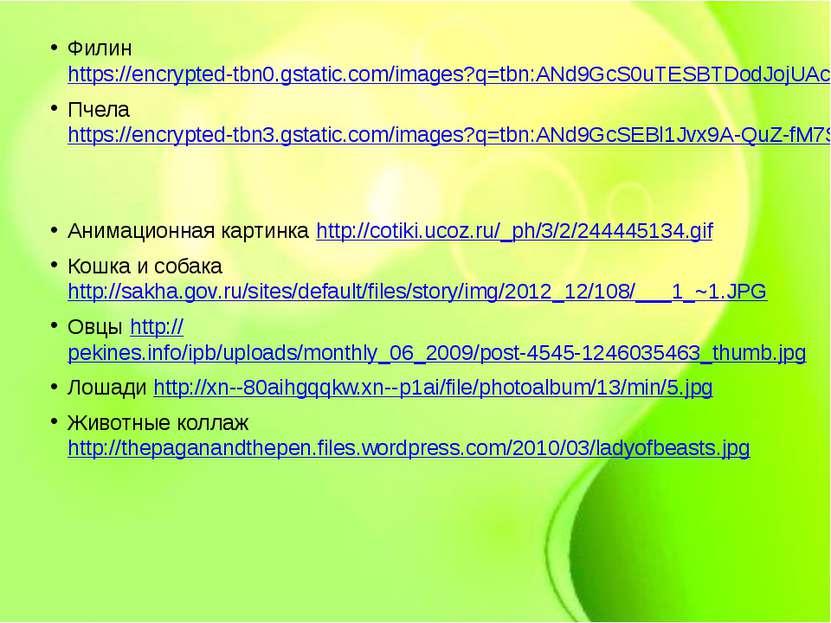 Филин https://encrypted-tbn0.gstatic.com/images?q=tbn:ANd9GcS0uTESBTDodJojUAc...