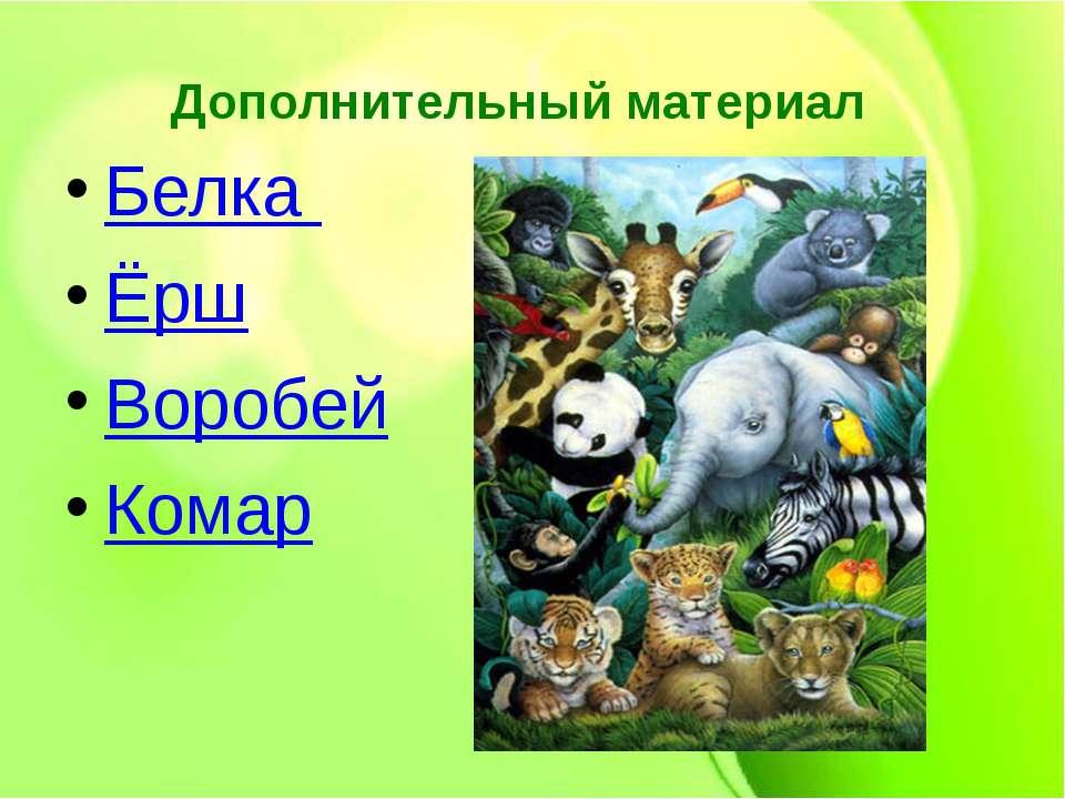 Дополнительный материал Белка Ёрш Воробей Комар