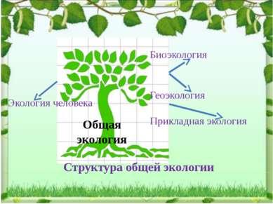 Биоэкология Геоэкология Прикладная экология Экология человека Структура общей...