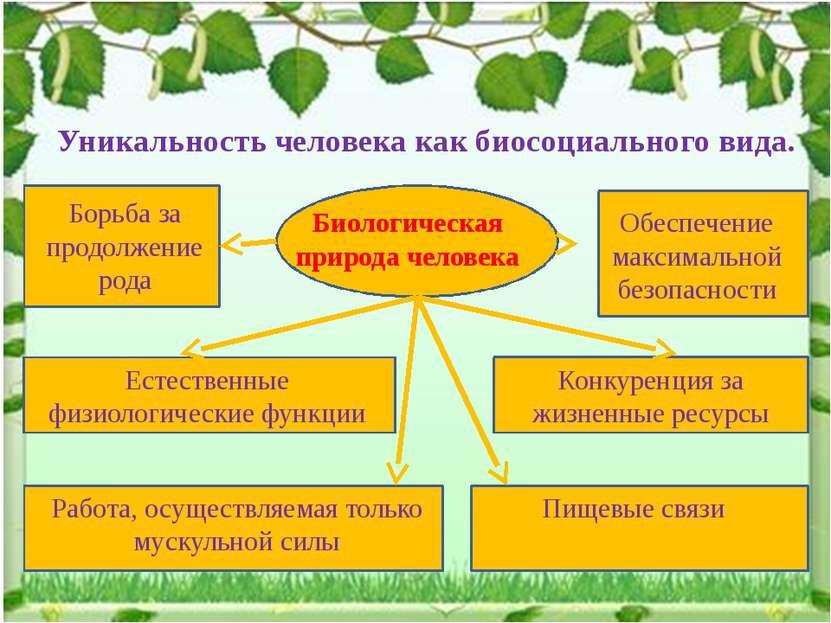 Уникальность человека как биосоциального вида. Биологическая природа человека...