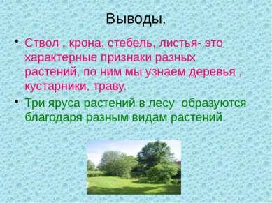 Выводы. Ствол , крона, стебель, листья- это характерные признаки разных расте...