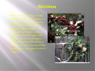 Mistletoe Mistletoe was often hung over the entrances to homes of the pagans ...
