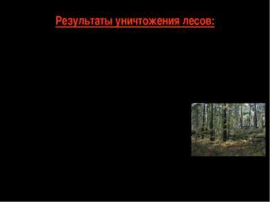 Результаты уничтожения лесов: Разрыв цепи питания Уменьшение кислорода Разруш...