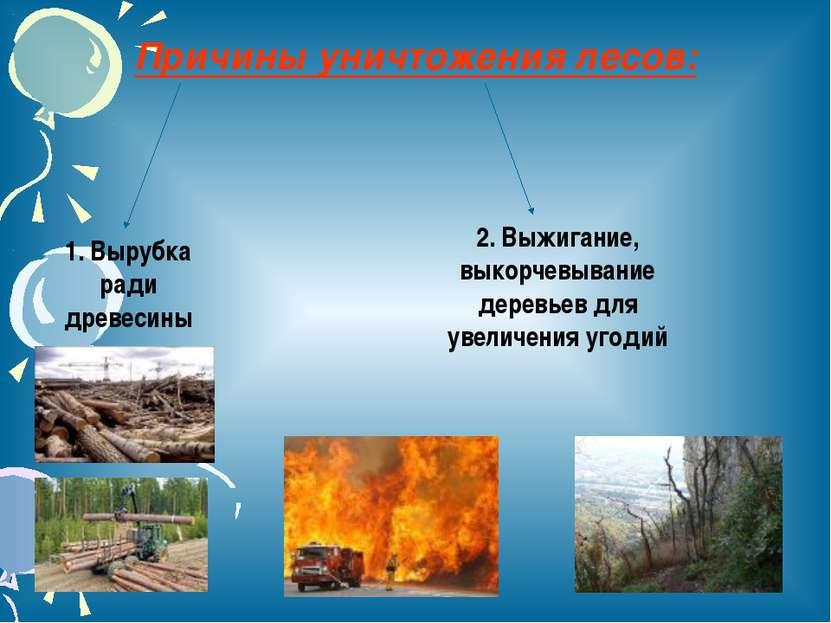 Причины уничтожения лесов: 1. Вырубка ради древесины 2. Выжигание, выкорчевыв...