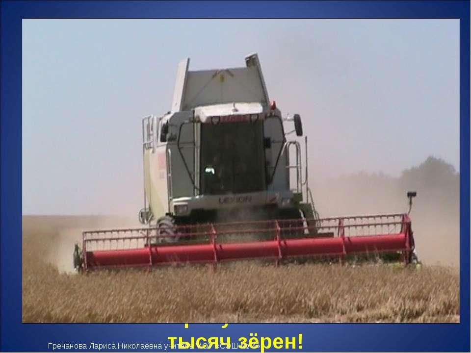 Из зёрнышка пшеницы можно получить около 20 миллиграммов муки первого сорта. ...
