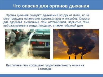 Что опасно для органов дыхания Органы дыхания очищают вдыхаемый воздух от пыл...