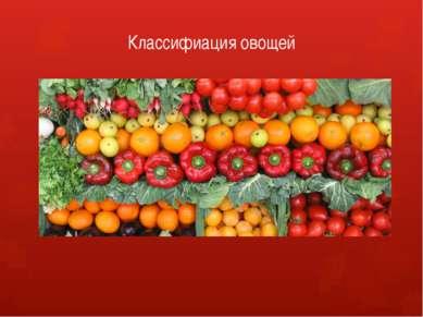 Классифиация овощей