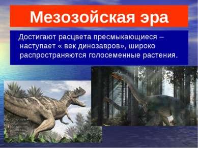 Мезозойская эра Достигают расцвета пресмыкающиеся – наступает « век динозавро...
