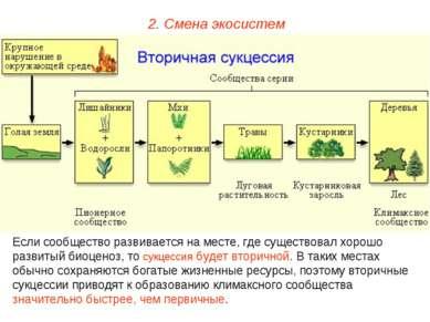 2. Смена экосистем Если сообщество развивается на месте, где существовал хоро...