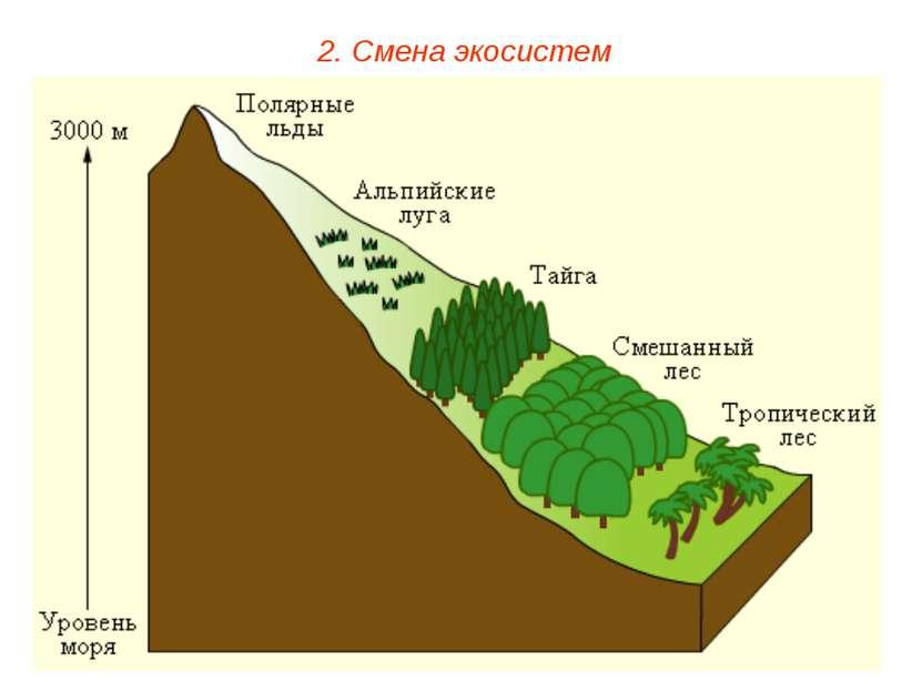 2. Смена экосистем