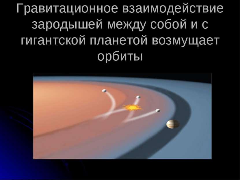 Гравитационное взаимодействие зародышей между собой и с гигантской планетой в...