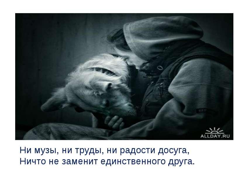 Ни музы, ни труды, ни радости досуга, Ничто не заменит единственного друга.