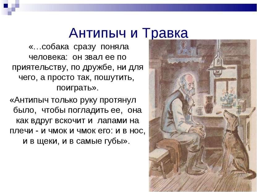 Антипыч и Травка «…собака сразу поняла человека: он звал ее по приятельству, ...