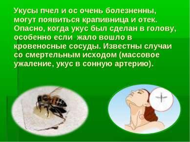 Укусы пчел и ос очень болезненны, могут появиться крапивница и отек. Опасно, ...