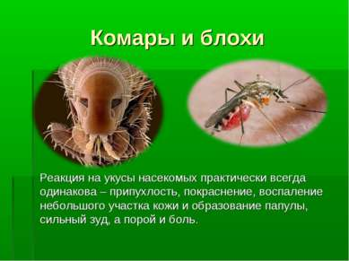Комары и блохи Реакция на укусы насекомых практически всегда одинакова – прип...