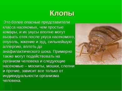 Клопы Это более опасные представители класса насекомых, чем простые комары, и...