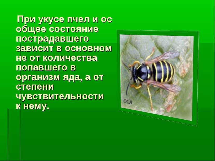 При укусе пчел и ос общее состояние пострадавшего зависит в основном не от ко...