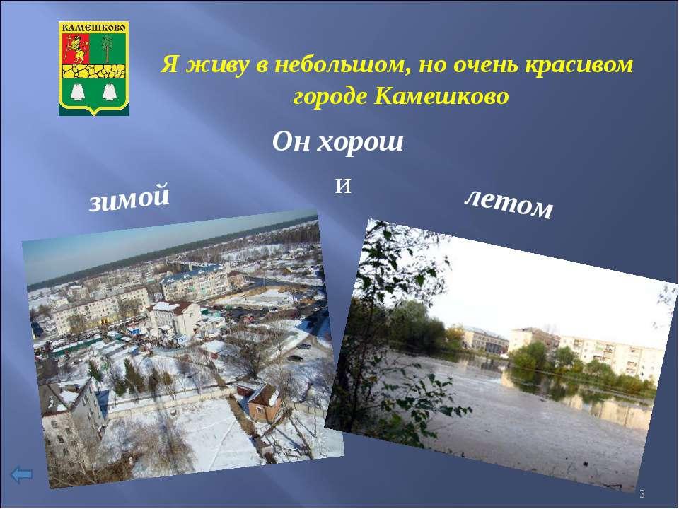 Я живу в небольшом, но очень красивом городе Камешково Он хорош зимой и летом *