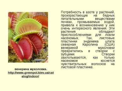 Потребность в азоте у растений, произрастающих на бедных питательными веществ...
