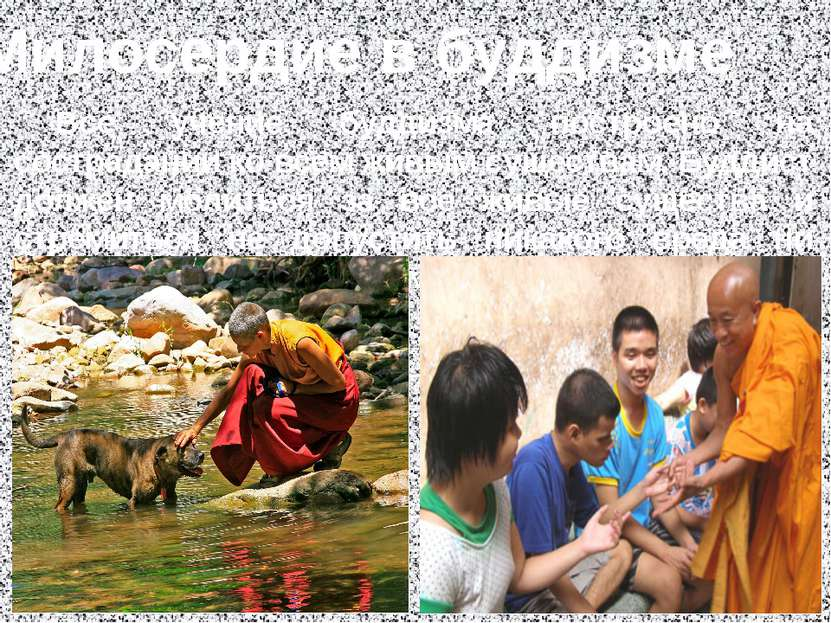Милосердие в буддизме Всё учение буддизма построено на сострадании ко всем жи...