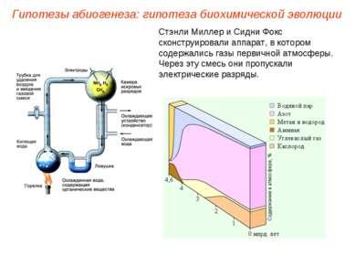 Стэнли Миллер и Сидни Фокс сконструировали аппарат, в котором содержались газ...