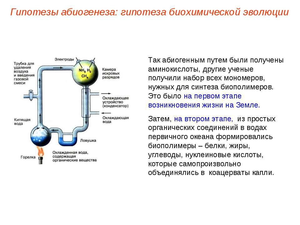 Так абиогенным путем были получены аминокислоты, другие ученые получили набор...