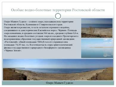Особые водно-болотные территории Ростовской области Озеро Маныч-Гудило Озеро ...
