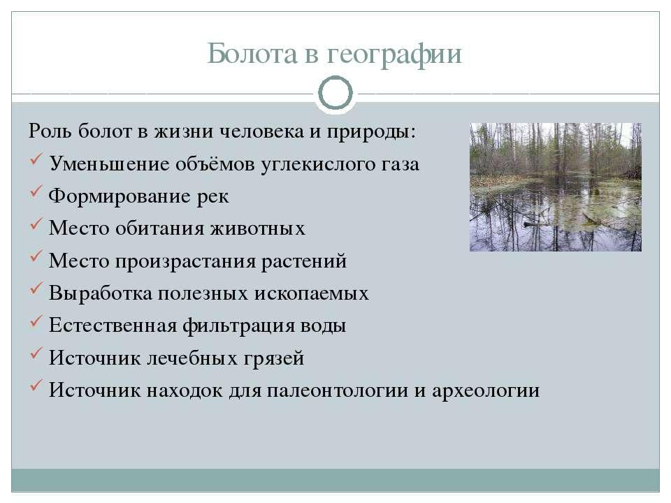Болота в географии Роль болот в жизни человека и природы: Уменьшение объёмов ...