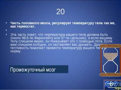 20 Часть головного мозга, регулирует температуру тела так же, как термостат. ...