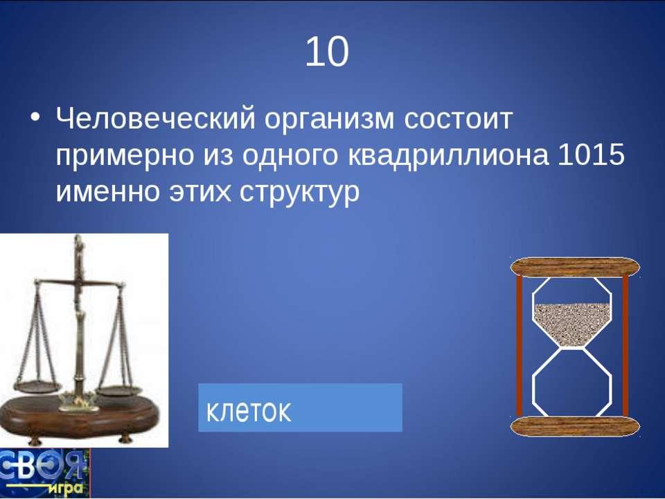 10 Человеческий организм состоит примерно из одного квадриллиона 1015 именно ...