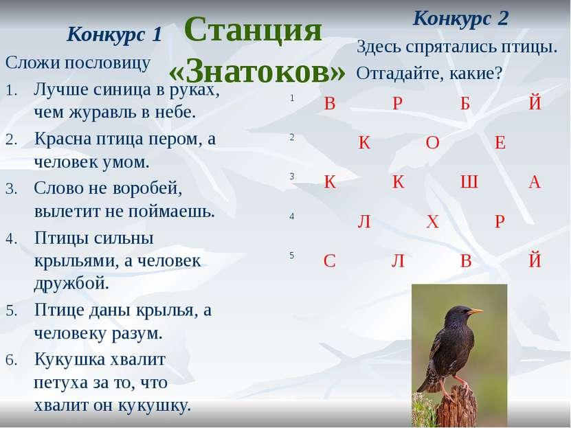 Станция «Знатоков» Конкурс 2 Здесь спрятались птицы. Отгадайте, какие? Конкур...
