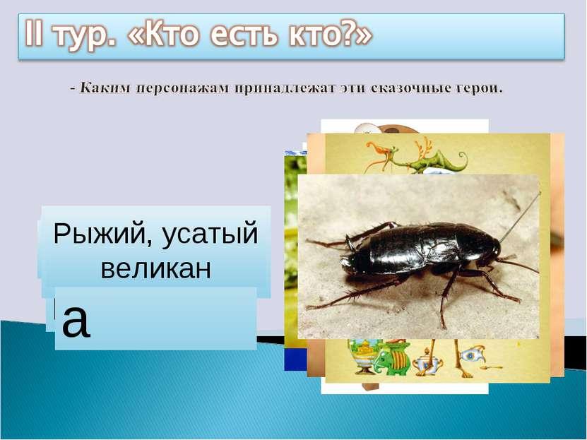 Айболит Бармалей Мойдодыр Цокотуха Каракула Барабек Тотошка, Кокошка Федора Р...