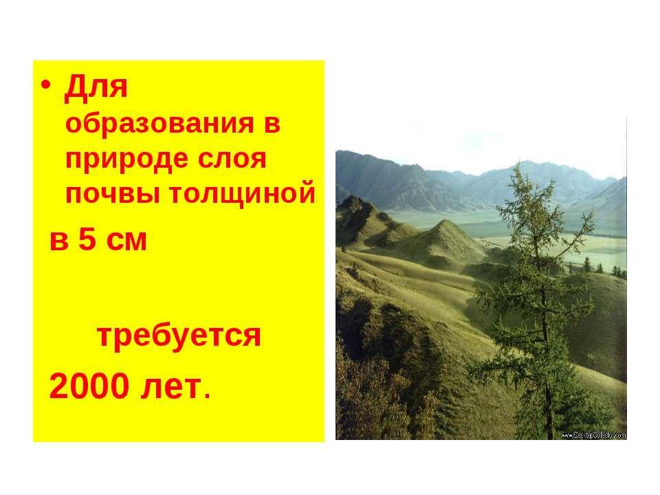 Для образования в природе слоя почвы толщиной в 5 см требуется 2000 лет.