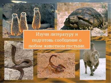 Изучи литературу и подготовь сообщение о любом животном пустыни.