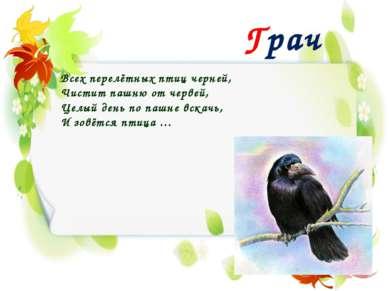 Грач Всех перелётных птиц черней, Чистит пашню от червей, Целый день по пашне...