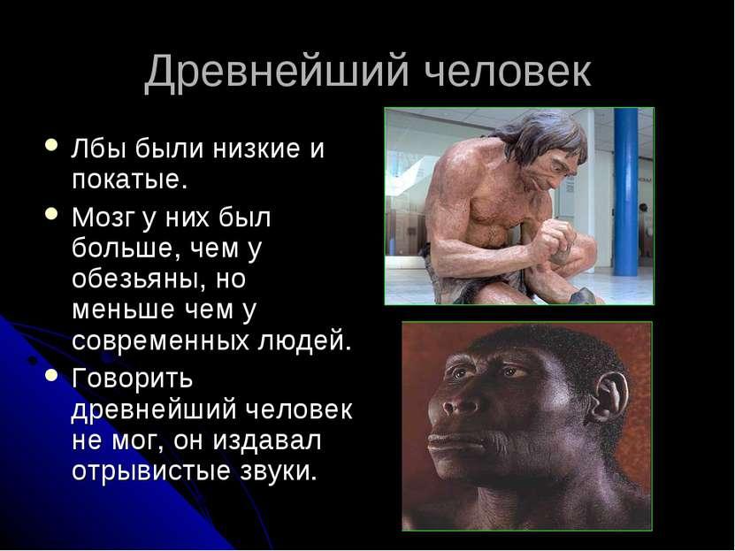 Древнейший человек Лбы были низкие и покатые. Мозг у них был больше, чем у об...